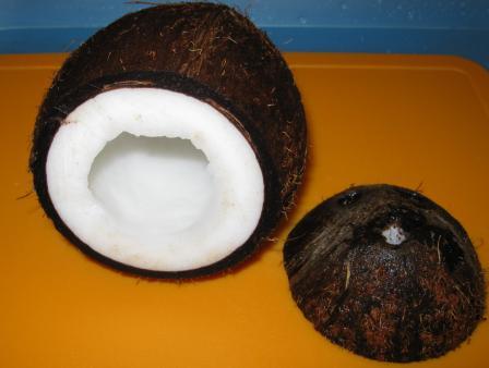 кокос для аквариума